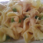 OOMPY-Chicken Noodle Casserole